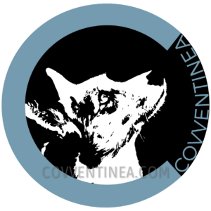 Logo Covventinea contact
